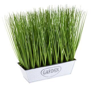 Ghiveci cu iarbă ornamentală