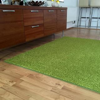 Covor SHAGGY verde