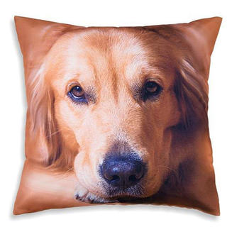 Față de pernă decorativă Golden Retriever